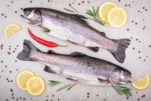 Čerstvé ryby v zimě? Hlídejte lesk v očích a narůžovělé žábry