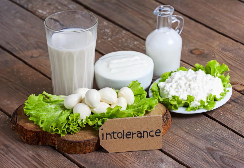 Hledání alternativ. Rozmanitý jídelníček bez laktózy?
