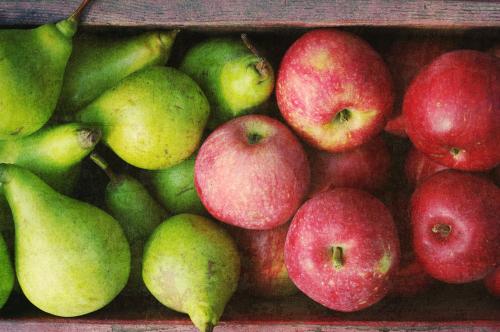 Jablka a hrušky – (ne)obyčejné tradiční ovoce. Čím vším nás překvapí?
