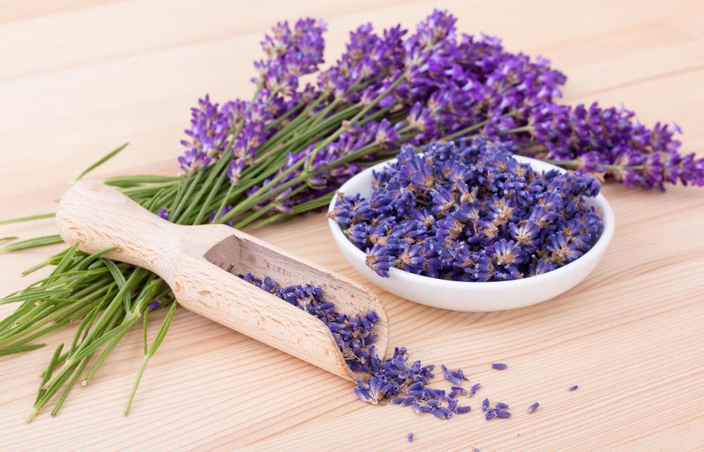 Levandule vnese do kuchyně vůni Provence. K jakým jídlům se hodí?