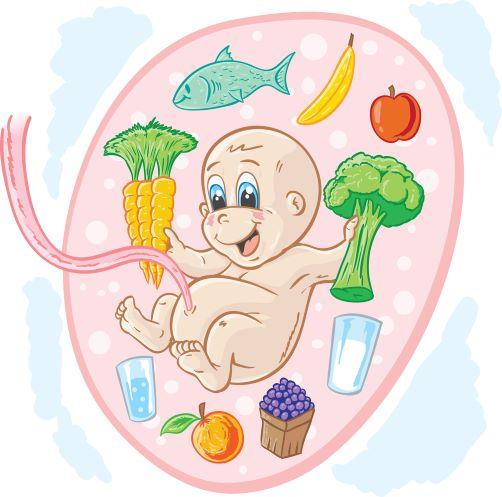 Těhotenská strava