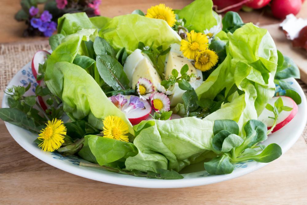 Zdravá ozdoba nejen zeleninového talíře. Jedlé květy?