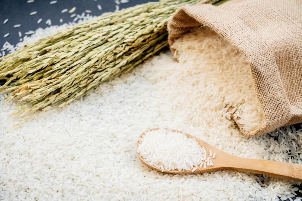 Rýže má mnoho podob - basmati, arborio, celozrnná. Víte, kdy jakou vybrat?