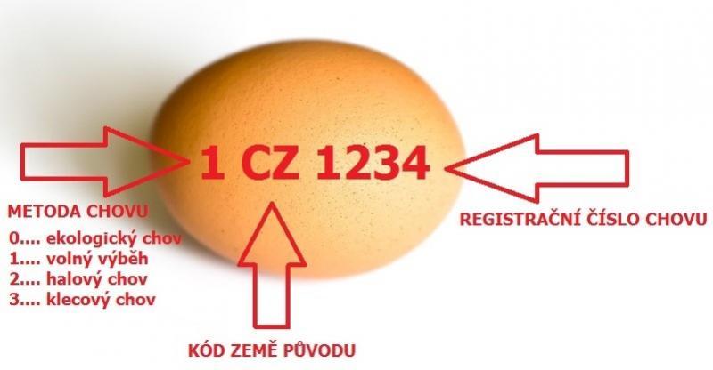 vejce_infografika