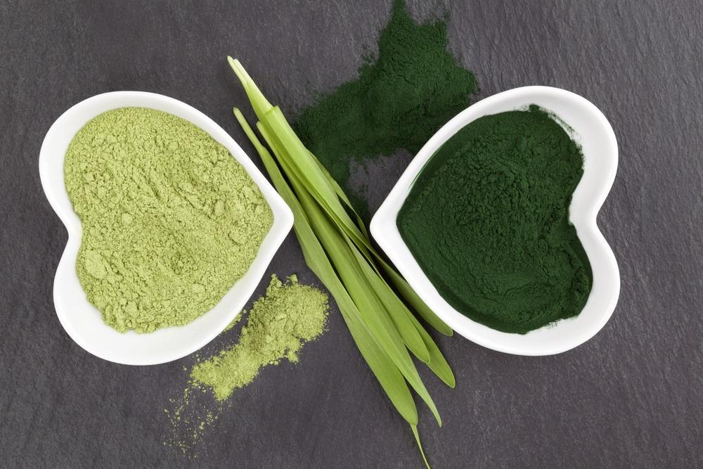 Zelenáči - chlorella a zelený mladý ječmen