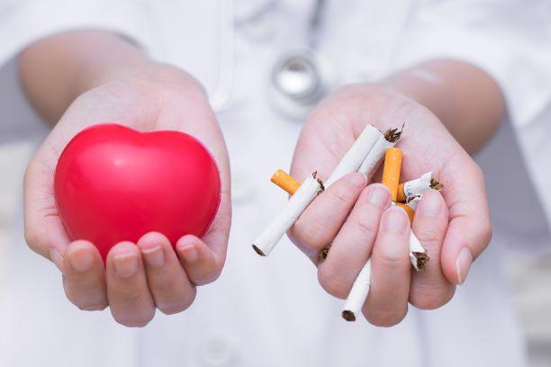 Zanechat kouření prospívá srdci