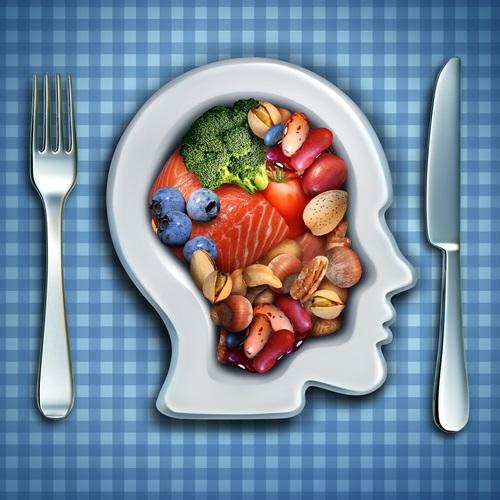 výživa pro mozek