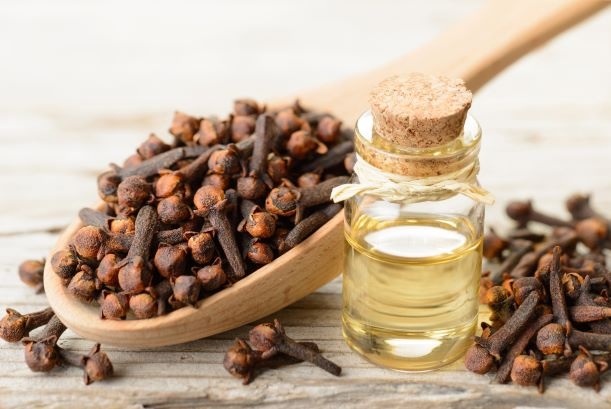 Hřebíček není jen koření – voní, chutná i léčí