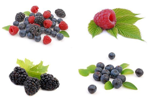 Ať čerstvé, či mražené. Lesní plody bojují proti zánětům a volným radikálům