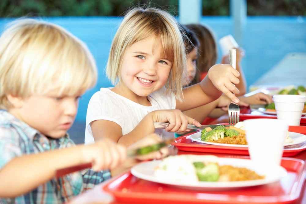 Přesolené školní obědy - kdo nese odpovědnost? Výsledky studií jsou alarmující!