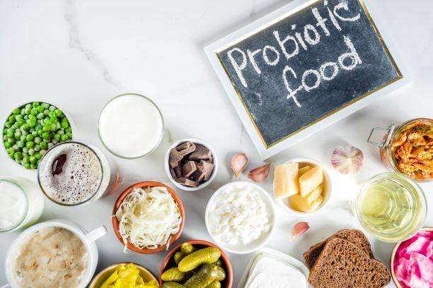 Síla probiotik, prebiotik a symbiotik