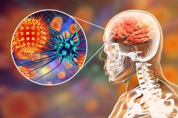 Meningokokové infekce: fakta a mýty o nemoci, která ničí lidské životy