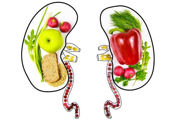 Výživa ledvin