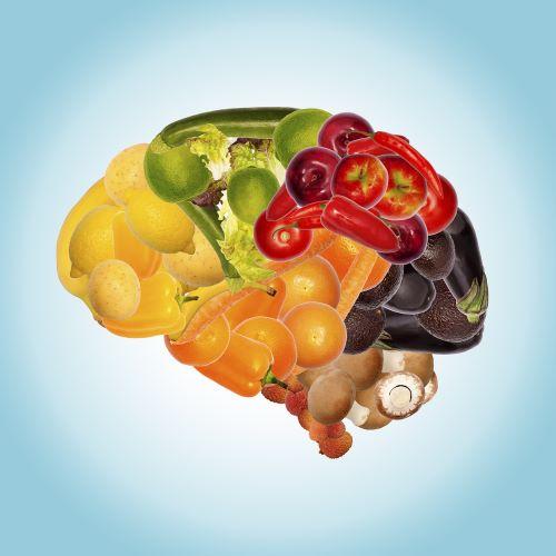 zdravý mozek