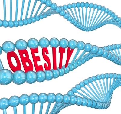 Genetika určuje náchylnost k obezitě. Je jedno, co jíme?