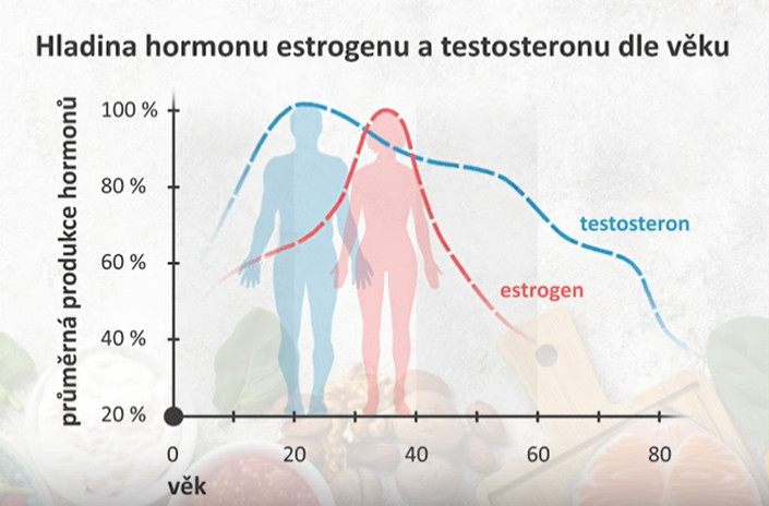 Hladina estrogenu a testosteronu
