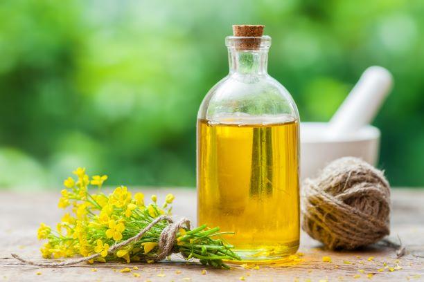 Řepkový olej má nejvhodnější složení mastných kyselin