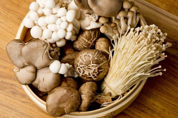 Houby jsou díky bílkovinám nazývány maso lesa. Díky vitaminům posilují imunitu