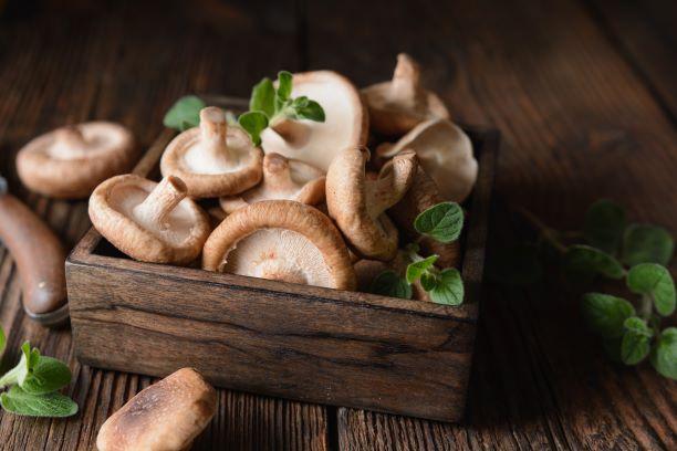 betaglukany-houby