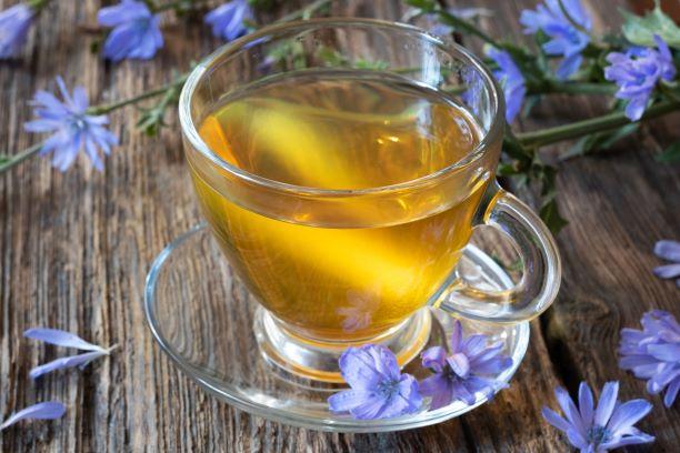 čekankový čaj