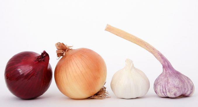 Přírodní prevence onemocnění. Antibiotika z cibule a česneku