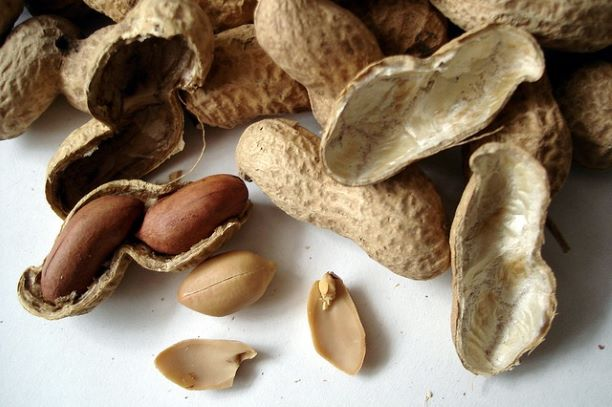 arašídy