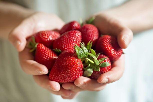 Lahodné jahody – ovoce se spoustou benefitů
