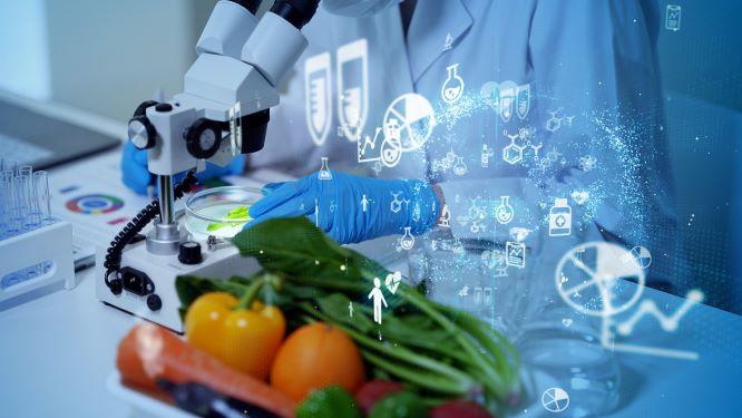 jídlo budoucnosti