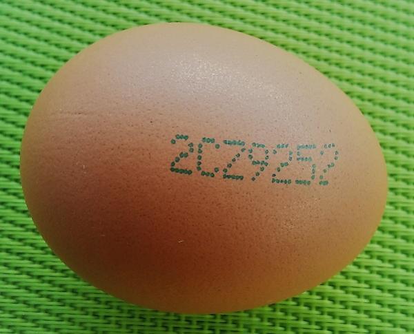15 x vejce v otázkách a odpovědích