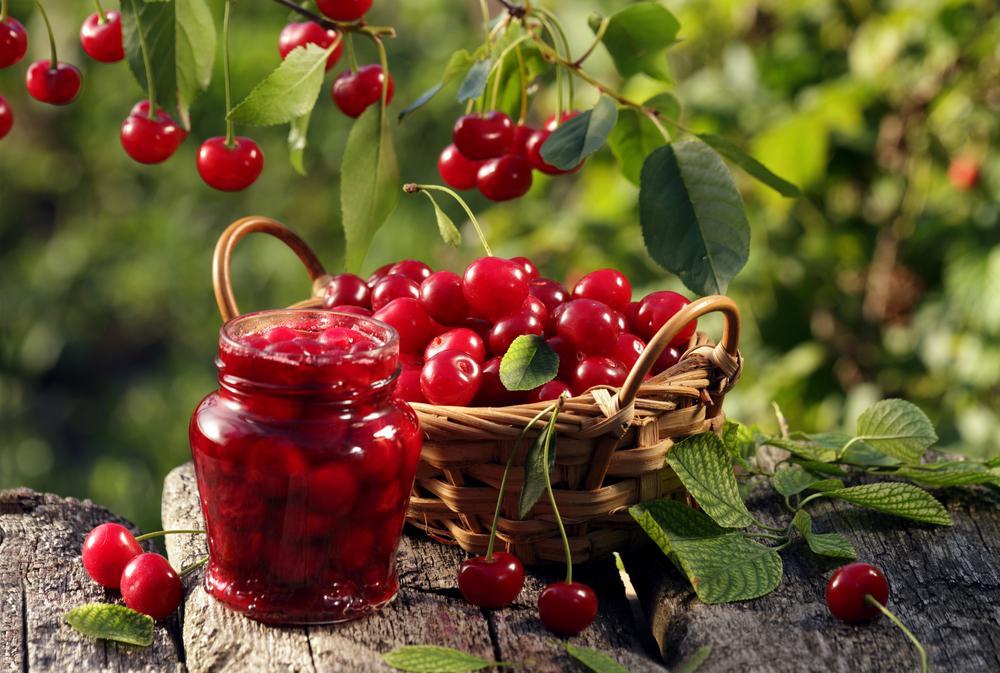 Neváhejte, třešně jsou zdravé. Doplňte si jídelníček