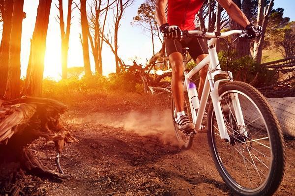 letní sporty, běh, in-line bruslení, plavání, beach volajbal