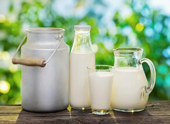 Mýty... o mléce