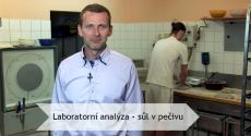 Laboratorní analýza - sůl v pečivu